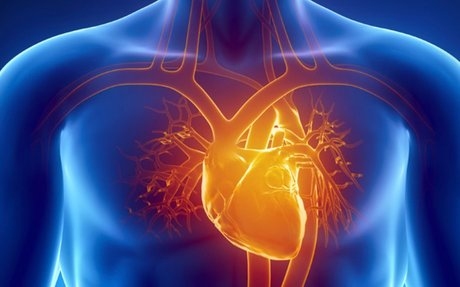What Is a Cardiothoracic Surgeon?