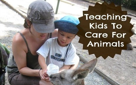 Teaching Kids To Care For Animals - Moments A Day