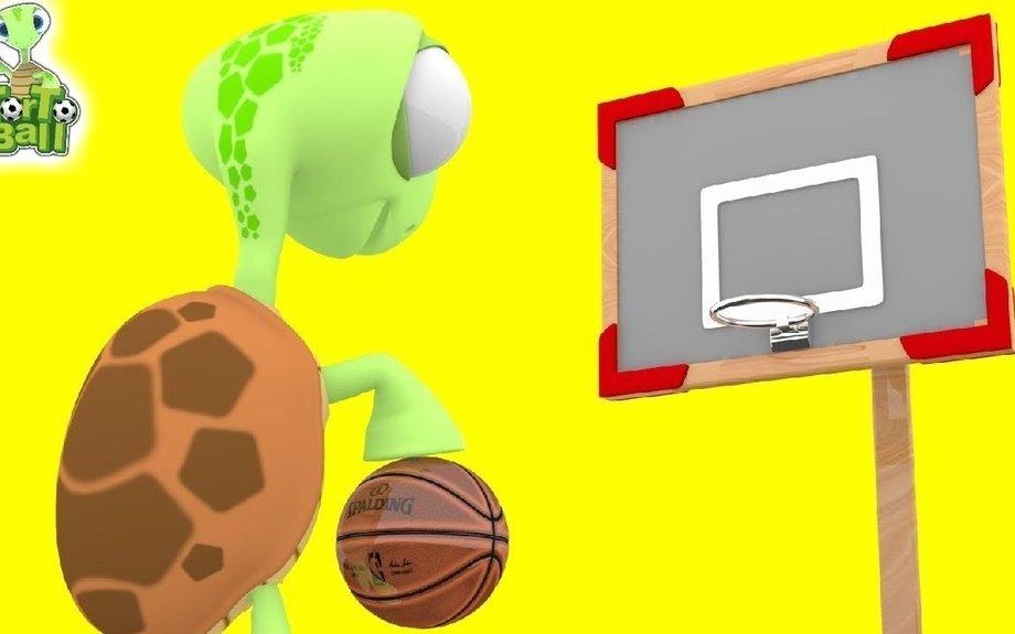 BASKET BALLS Turtle Shooting and Dribble Drills Basketball For Children and Kids | Torto B