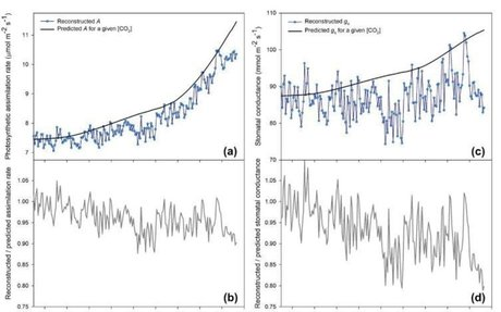 Fire deficits have increased drought sensitivity in dry conifer forests