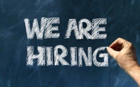 How Can One Optimize Job Portal Profiles?