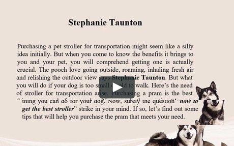 Stephanie Taunton | Find Best Stroller for Your Pet