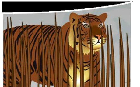 Animal Adaptations: StudyJams! Science | Scholastic.com