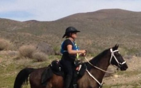 Endurance: Share Your Gaited Horse's Trail Adventures and Win Prizes