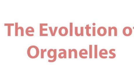 The Evolution of Organelles
