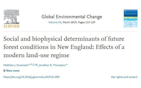Social and biophysical determinants of future forest conditions in New England: Effects of a modern land-use regime