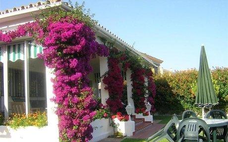 Vakker villa med 3 soverom og svømmebasseng i San Pedro de Alcántara (R209198)