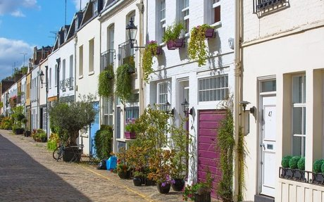 4 mews property planting tips to transform your outdoor space   Lurot Brand