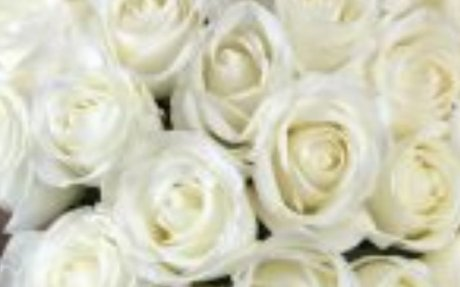 Same Day Flower Delivery Services by Local Florist
