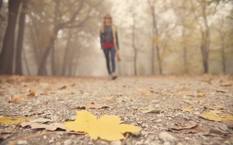New study suggests people with OCD are especially sensitive to the seasons