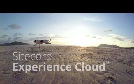 New Sitecore Experience Cloud™ Transforms Digital Experiences | Sitecore