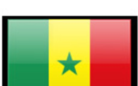 Senegal Land Surveyors