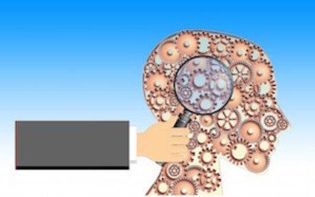 20 biais cognitifs qui orientent notre jugement | Le Blog Thierry Noëllec Médiation