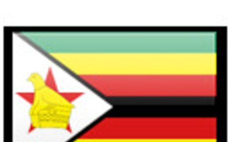 Zimbabwe Surveyors