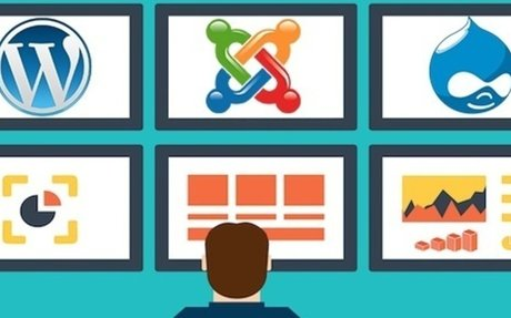 Which CMS should you choose for your website: WordPress, Joomla or Drupal?
