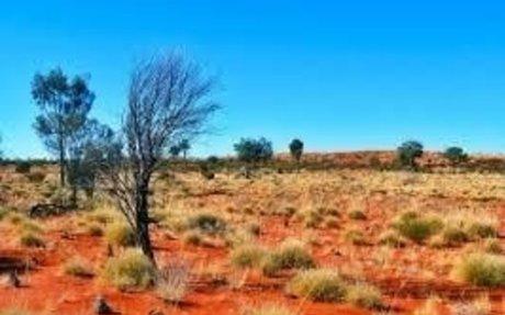 Great Victoria Desert landscape-Natural Resources Alinytljara Wiluṟara