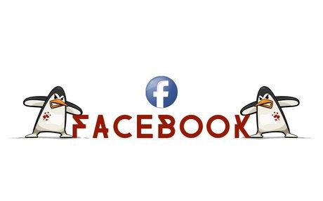 Facebook - Follow Killler Penguins