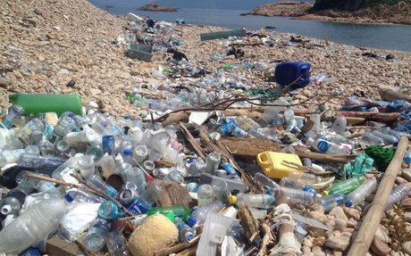 The New 'Plastics and Sustainability' Report: Greenwash or Wake-Up Call?