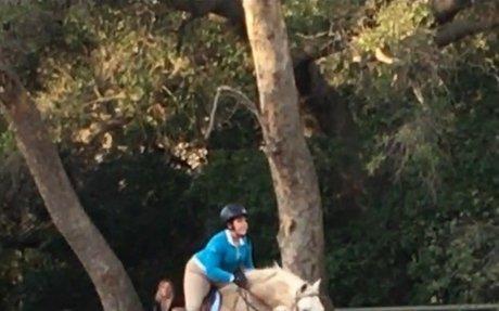 Foxfield Riding School