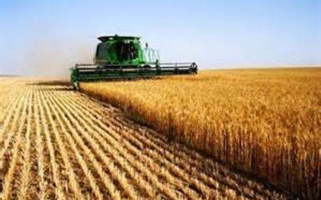 Agriculture : Plan cadre Yvelines, faîtes vous connaitre