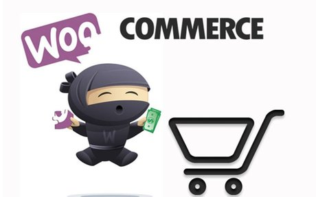 Why WooCommerce is Perfect for Startup E-Commerce Companies | Barn2 Media