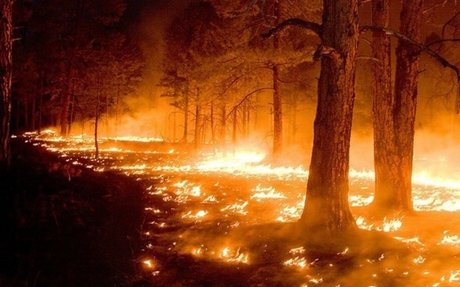 Changing drought conditions are linked to extreme wildfire events