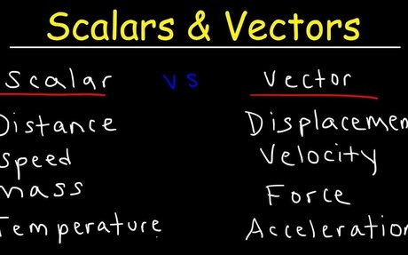 Scalars and Vectors Physics Video - Scalar vs Vector Quantities Explained, Examples