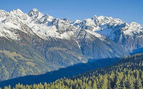 Forêts de montagne et changement climatique : impacts et adaptation