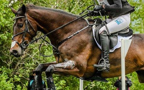 Eventing: US Equestrian Announces Erik Duvander as New Performance Director