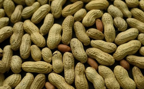An Australian researcher may have developed a long-term cure for peanut allergies