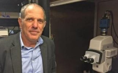 Dalhousie University working with Israeli researchers to study brain injuries, disease