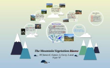The Mountain Vegetation Biome