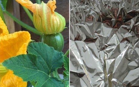 Mire használhatja egy kertész az alufóliát? 6 remek ötlet!