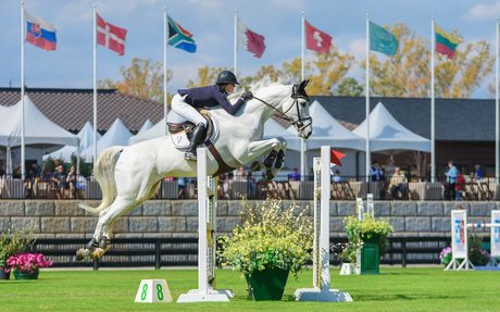 Spartanburg: will the 2018 World Equestrian Games in Mill Spring, NC, impact the Upstate?