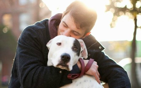 14 Signs You Love Dogs More Than Humans