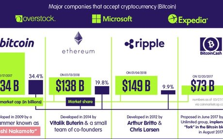 Infographic: A Beginner's Guide to Cryptocurrencies