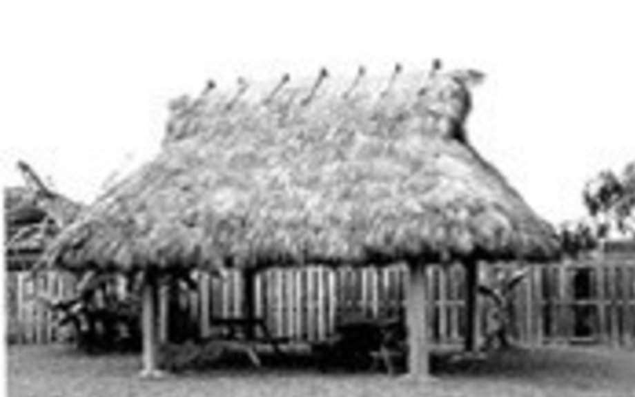 The Chikee  (Houses)