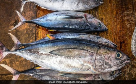 web:These Varieties Of Fish Have The Highest Levels Of Mercury