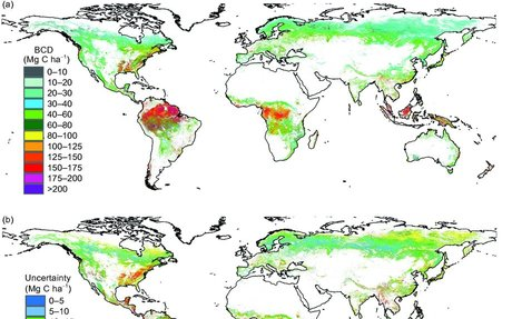 Mapping global forest biomass and its changes over the first decade of the 21st century