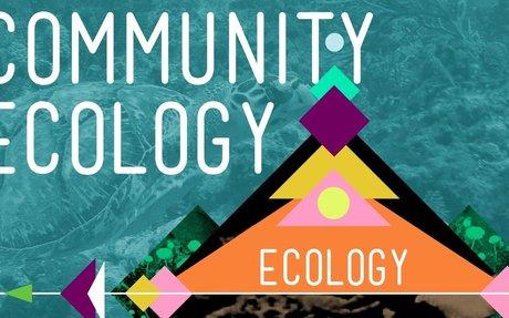 Community Ecology: Feel the Love - Crash Course Ecology #4