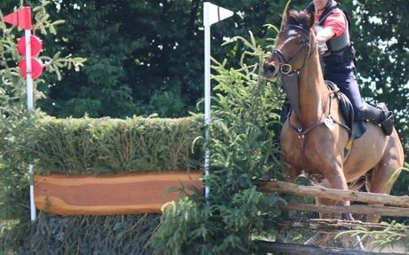 FEI Eventing Risk Management summit attracts world experts from 22 nations