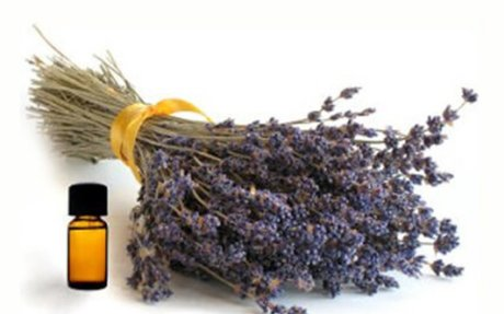 Clinical Aromatherapy - Lymphatic Therapy Services