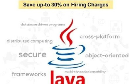 What are the basic requirements of Java Programmer to be hired?