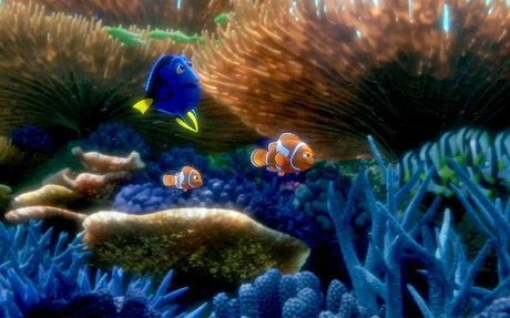 #5 Finding Dory because it stresses the importance of family.