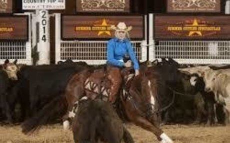 AQHA: A Judge's Perspective: Youth Cutting