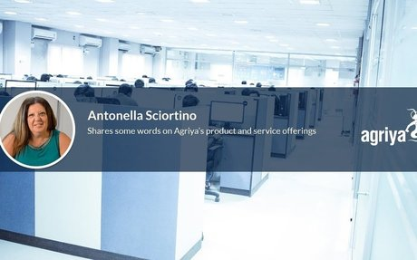 An honest review of Agriya by Antonella Sciortino - a happy client