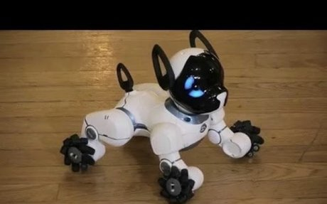 Best Robot Toys For Kids