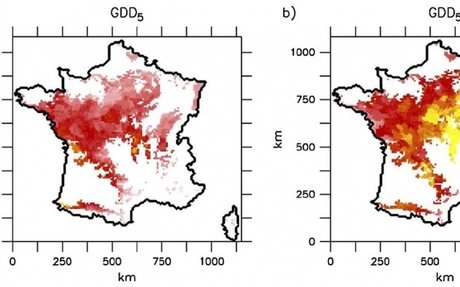 The risk of tardive frost damage in French vineyards in a changing climate