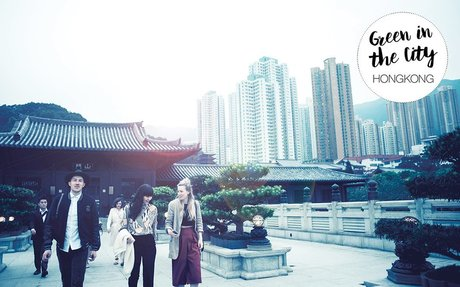 Green in the City Guide: Eco Hongkong Tipps by Peppermynta