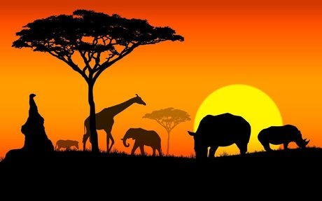 What is Africa Known For?